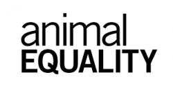 Animal Equity